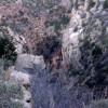 Grand Canyon (14/148)