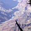 Grand Canyon (44/148)